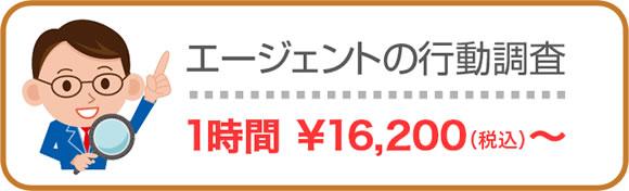 エージェントの行動調査 1時間16200円